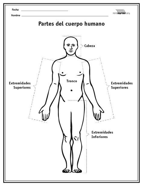 descargar e imprimir dibujos del cuerpo humano para colorear y pintar partes del cuerpo humano para imprimir