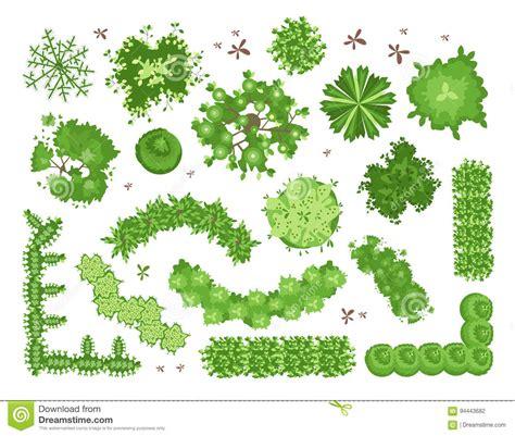 landscape design elements vector illustration set of different green trees shrubs hedges top view for