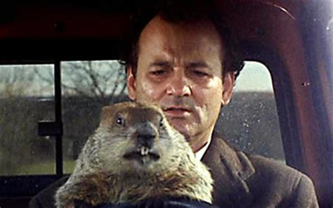 groundhog day phil connors groundhog day 1993 starring bill murray andie macdowell