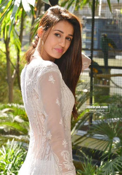 south actress disha 89 best images about disha patani on pinterest actresses