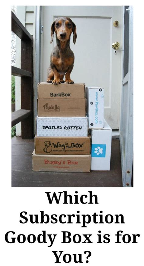 puppy subscription box subscription boxes demystified they re all the same or are they the o jays