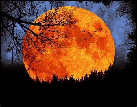 harvest moon love things to paint pinterest full
