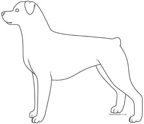 rottweiler drawing the gallery for gt easy rottweiler drawing