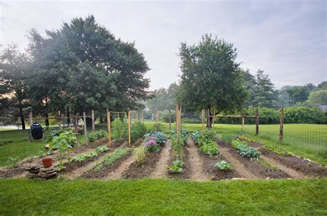 Planning And Planting A Vegetable Garden Starting A Fruit And Vegetable Garden