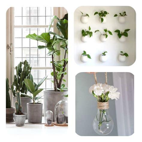 Plante De Cuisine by Plante Cuisine Decoration Fabulous Decoration Cuisine