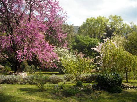 giardini di ninfa sermoneta i giardini di ninfa e sermoneta associazione la castellina