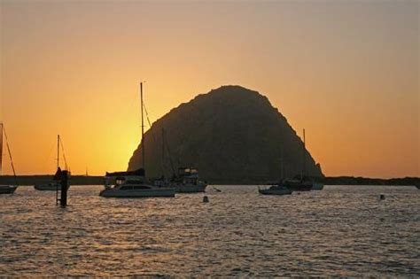 morro bay boat tours red anchor charters morro bay ca updated 2018 top tips