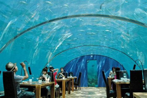 ithaa undersea restaurant spot cool stuff reviews the ithaa undersea restaurant