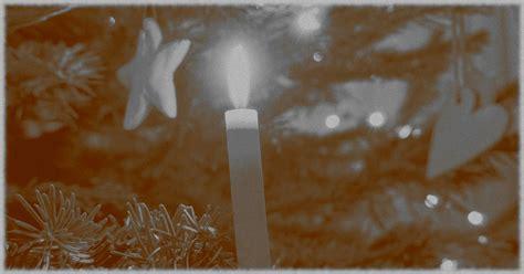 die geschichte des weihnachtsbaumes baumpflegeportal de