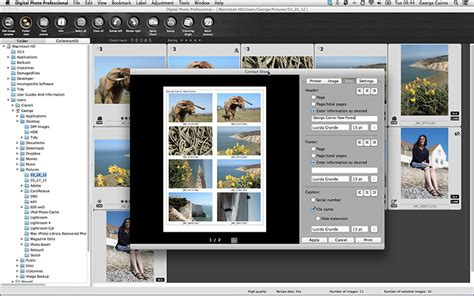 canon software digital photo professional canon s image processing