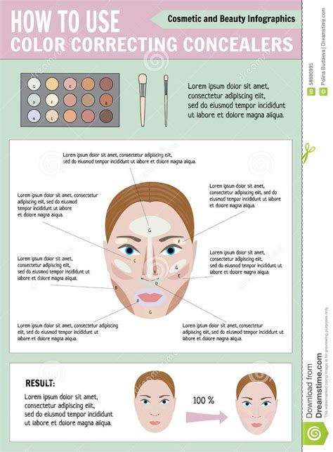 Eyeshadow Zones before and after makeup vector stock vector