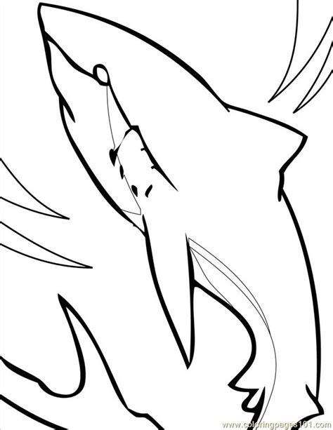 shark coloring pages pdf coloring pages great white shark ink fish gt shark free