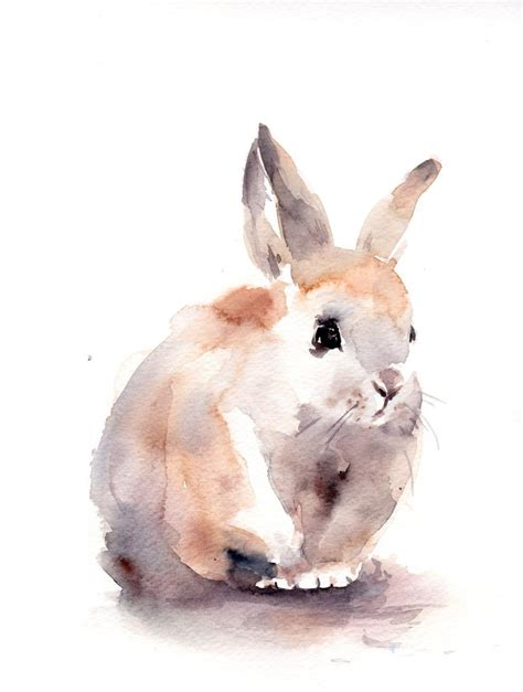 water color animals best 25 watercolor animals ideas on
