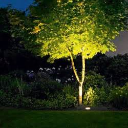 Led Landscape Tree Lights Led Asymmetric In Ground Luminaire B77008 By Bega Ylighting