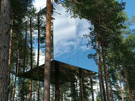 amazing tree lodge with mirror applications iroonie com