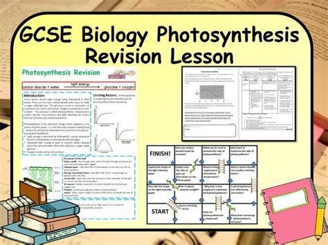 photosynthesis research paper contemporary writers look back from irony to