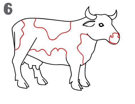 how to a cow how to draw a cow step by step