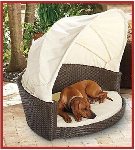 paws pet canopy cot canopies pets and platform
