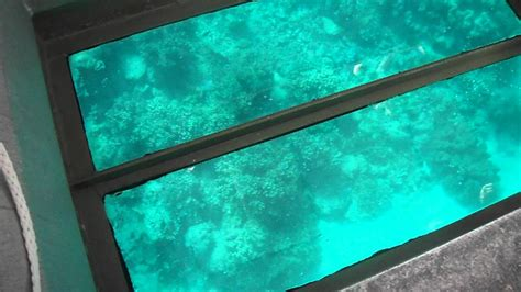 glass bottom boat great barrier reef 103 dias 0007 dia 2 austr 225 lia glass bottom boat