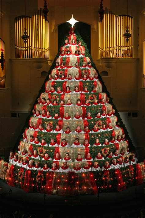 best 28 the living christmas tree company an earth