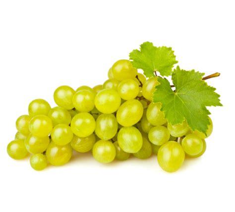 uva da tavola italia uva it 225 lia kg ma 231 227 de mel