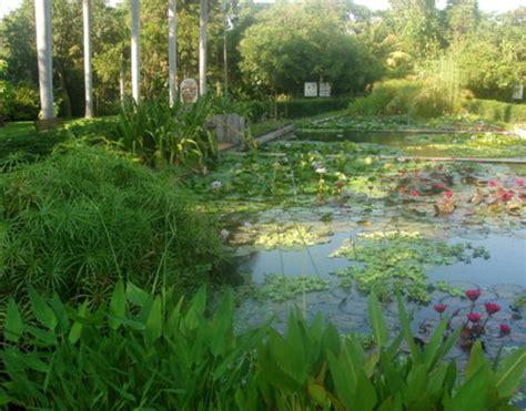 imagenes de jardines botánicos turismo culiacan m 233 xico fotos jard 205 n bot 193 nico culiac 193 n