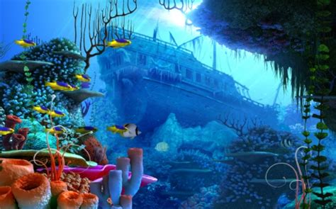 corals fish sunken ship oceans nature background