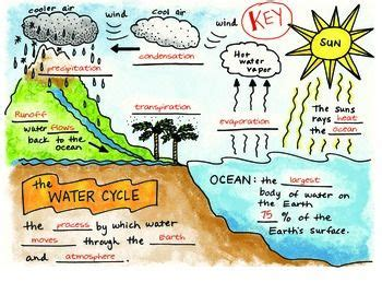 diagram 6th grade the water cycle foldable free by science doodles science science doodles