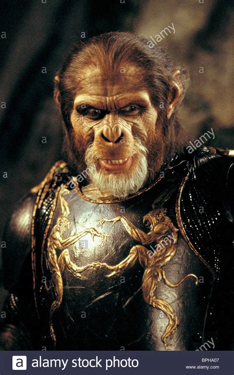 planet of the apes images thade stock photos thade stock images alamy