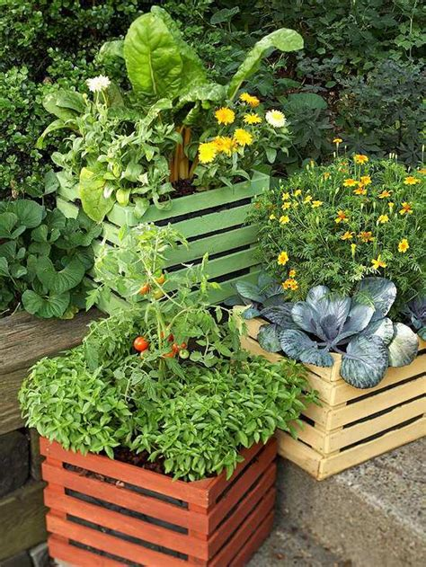 20 Interesting Fresh Ideas For Growing Vegetables In Container Gardens Vegetables