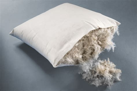 Feathers For Pillow Filling by Breakthrough Solution For Items Filled With Feathers