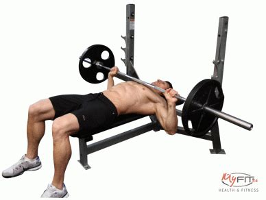 chest press without bench bench press exercise myfit