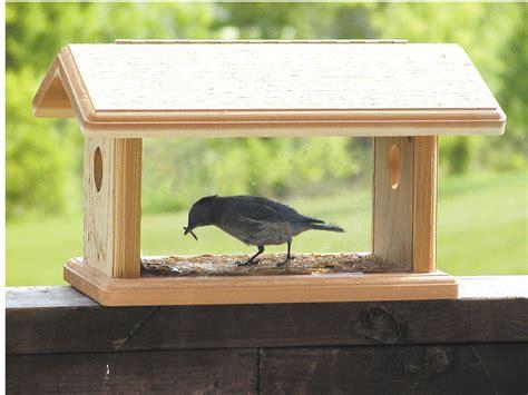 birds choice bluebird feeder