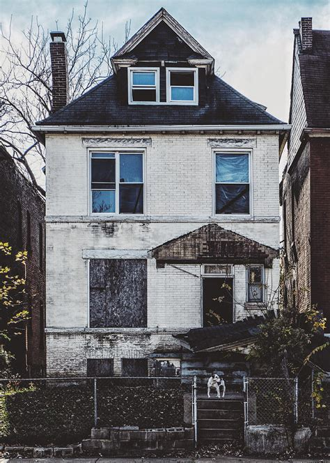 the dog house st louis abandoned house and dog in st louis mo photograph by dylan murphy