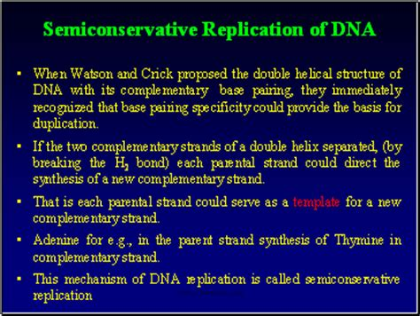 semiconservative replication involves a template what is the template the meselson stahl experiment sliderbase