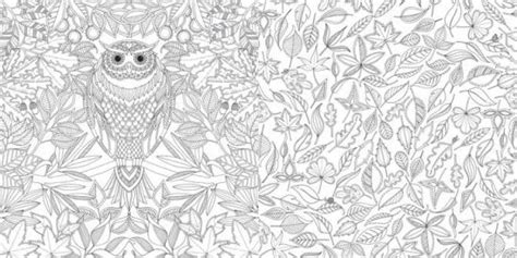 the secret garden coloring book barnes and noble secret garden an inky treasure hunt and coloring book by