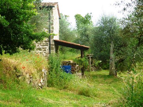 casa olivi casa olivi podere di maggio