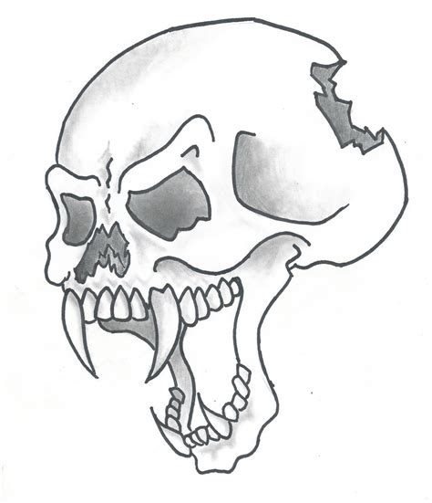 Drawing Pictures by Skull Drawing How To Draw Skull