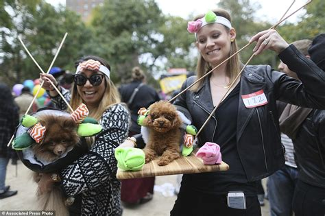 Dress It Up Button Puppy Parade hundreds of dogs dress up for 25th parade in new york city daily mail