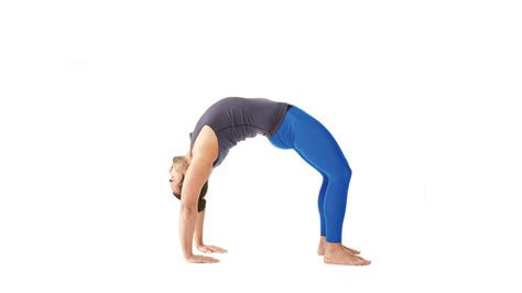 upward bow pose upward bow wheel pose urdhva dhanurasana yoga journal