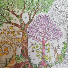 enchanted forest coloring book review 1000 images about pitt artist pen on faber