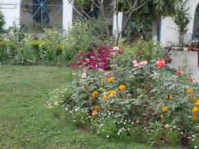 india garden butterfly garden