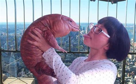 woman   giant pet lizard   friends