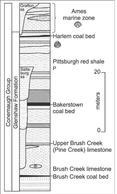 stratigraphic section trip 3 figure 12