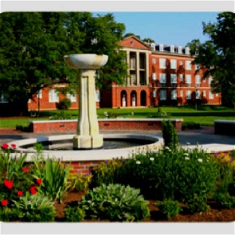 colleges in raleigh nc 17 best images about carolina raleigh on