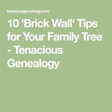 7 Tips On Tracing Your Family Tree by Best 25 Family Trees Ideas On Ancestry Tree