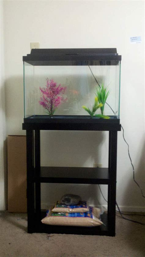 Stand Galon diy fish tank stand 10 gallon diy do it your self