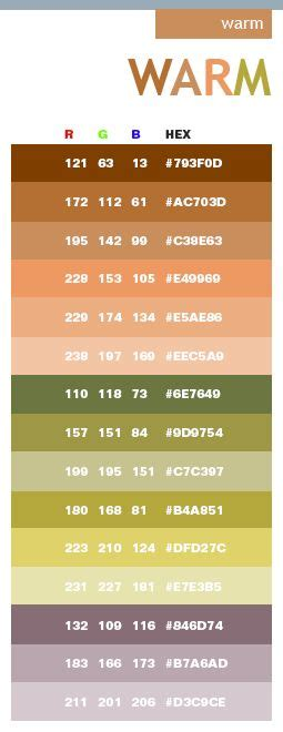 warm colour schemes 25 best ideas about hex color palette on pinterest