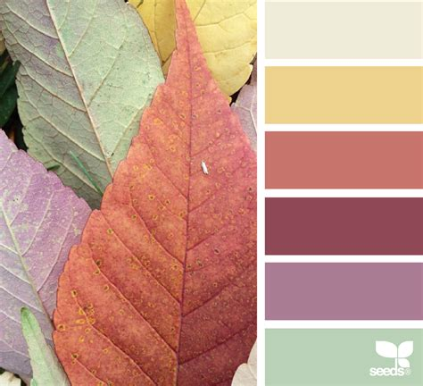 design seeds leaf tones design seeds