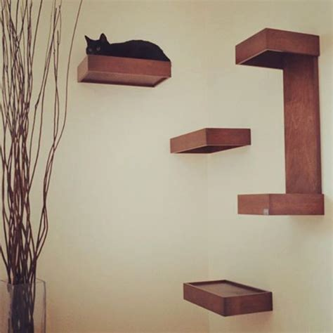 cat shelves for walls 1000 ideas about cat wall shelves on cat wall